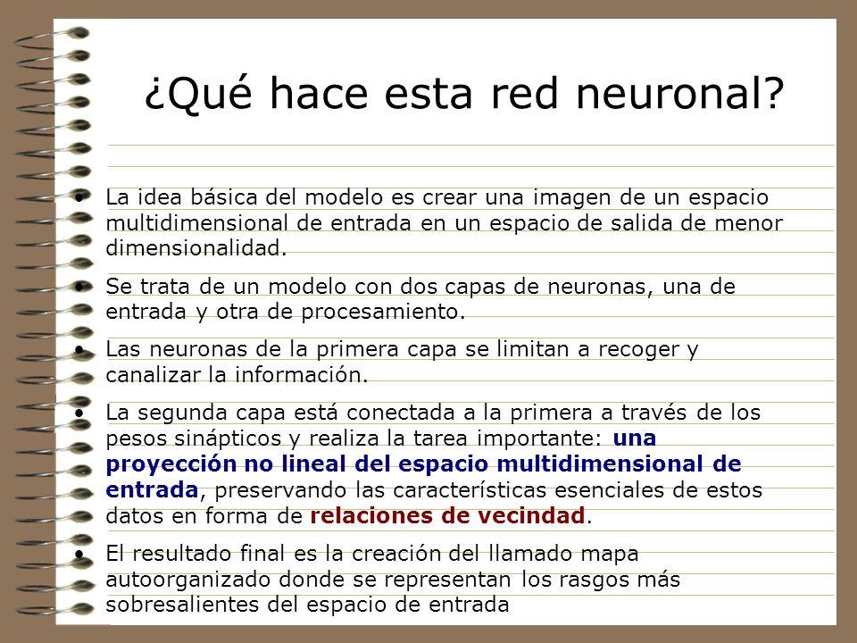 Aprendizaje no supervisado Este modelo neuronal, además de esta inspiración en determinadas zonas del cerebro, utiliza una estrategia de aprendizaje q