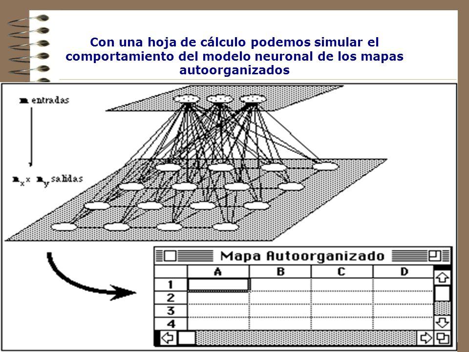 Con una hoja de cálculo podemos simular el comportamiento del modelo neuronal de los mapas autoorganizados