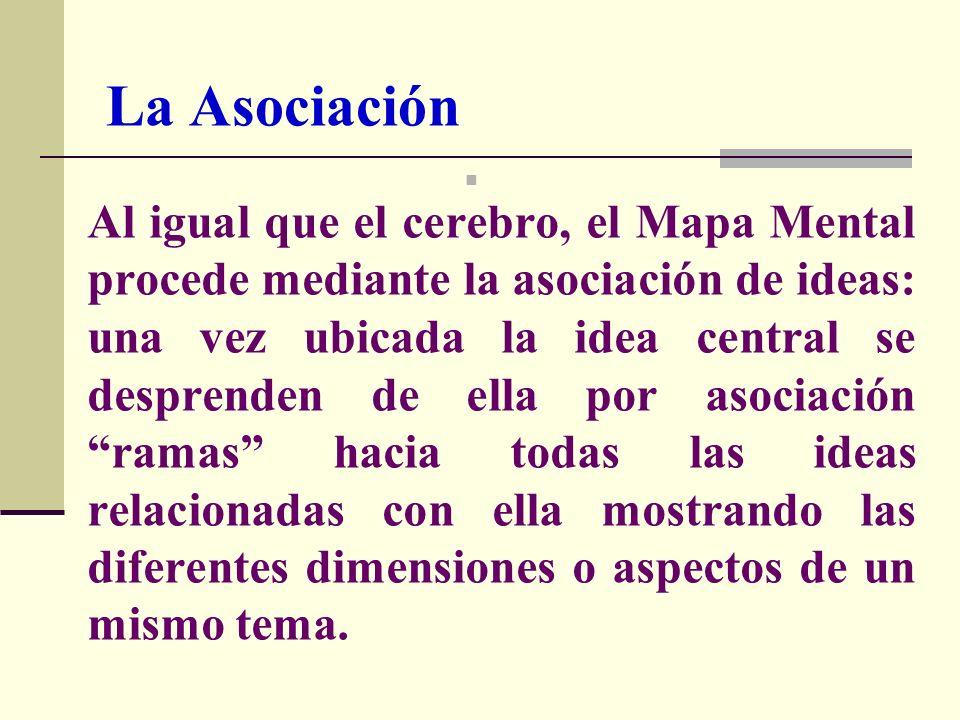 La Asociación Al igual que el cerebro, el Mapa Mental procede mediante la asociación de ideas: una vez ubicada la idea central se desprenden de ella p