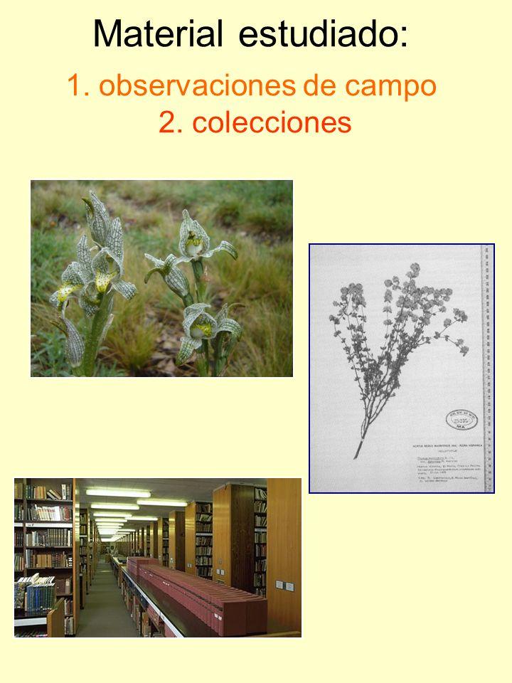 Material estudiado: 1. observaciones de campo 2. colecciones