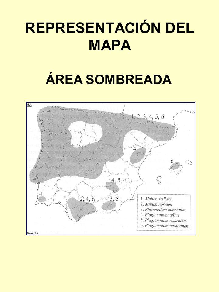 REPRESENTACIÓN DEL MAPA ÁREA SOMBREADA