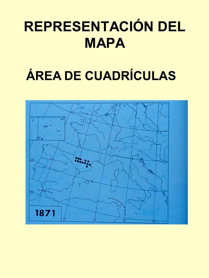 ÁREA DE CUADRÍCULAS