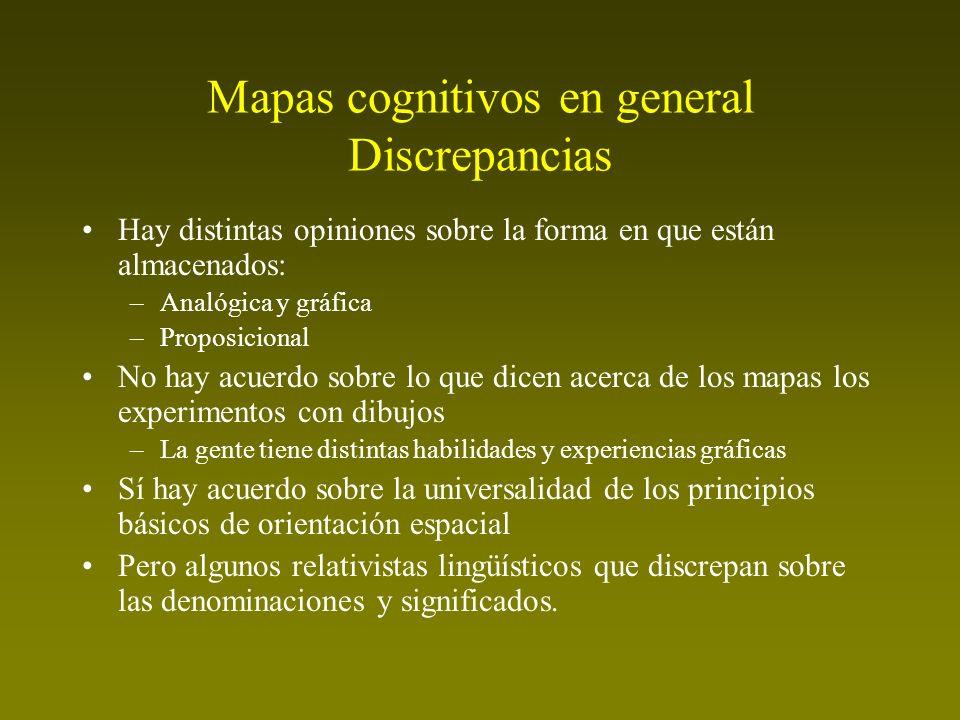 Mapas cognitivos en general Discrepancias Hay distintas opiniones sobre la forma en que están almacenados: –Analógica y gráfica –Proposicional No hay