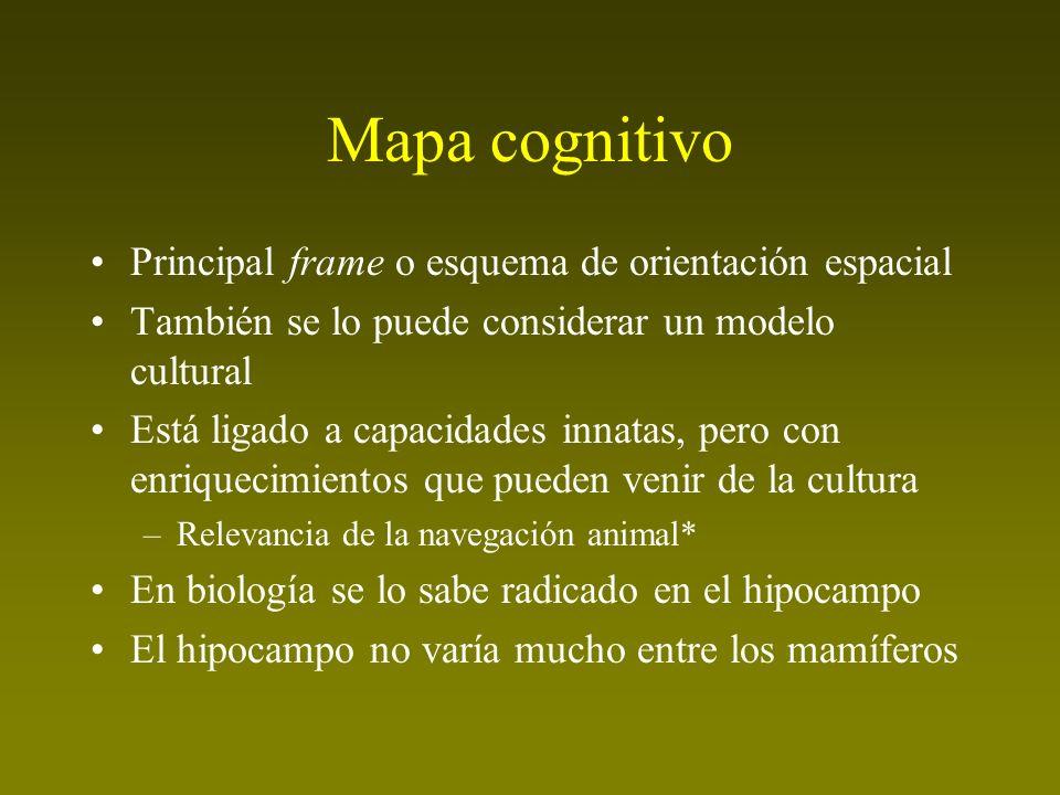 Mapa cognitivo Principal frame o esquema de orientación espacial También se lo puede considerar un modelo cultural Está ligado a capacidades innatas,