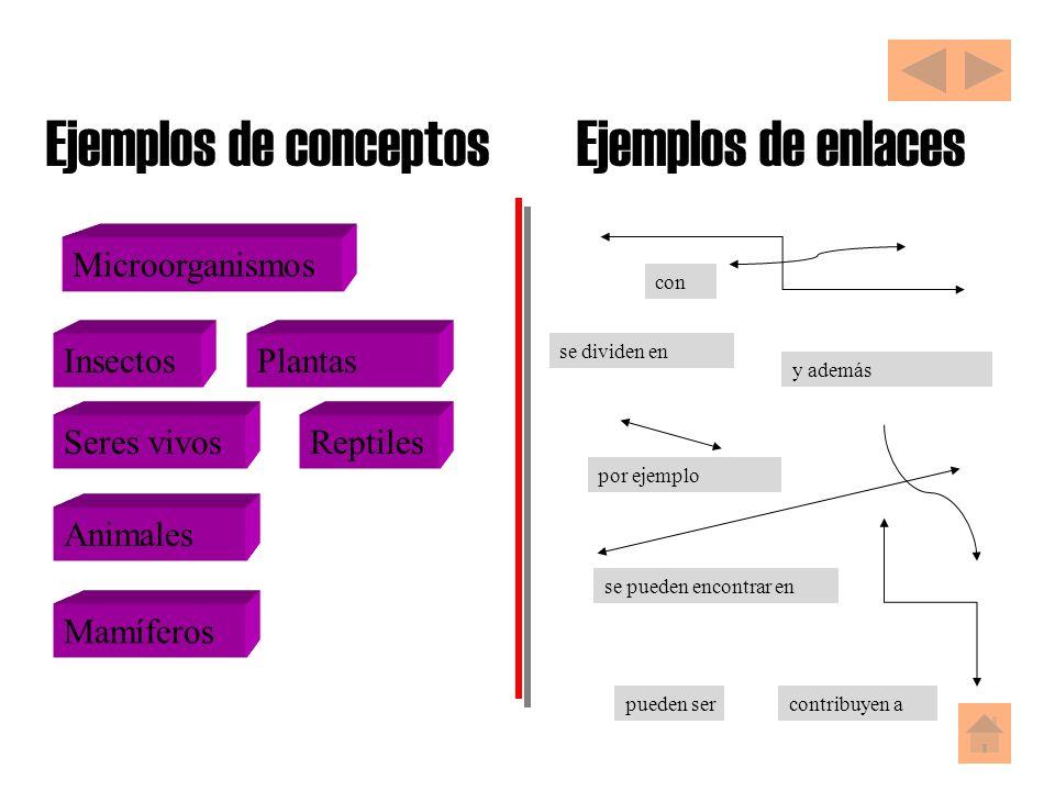 Ejemplos de conceptos Seres vivosReptiles Mamíferos Insectos Microorganismos Plantas Animales Ejemplos de enlaces se dividen en por ejemplo se pueden