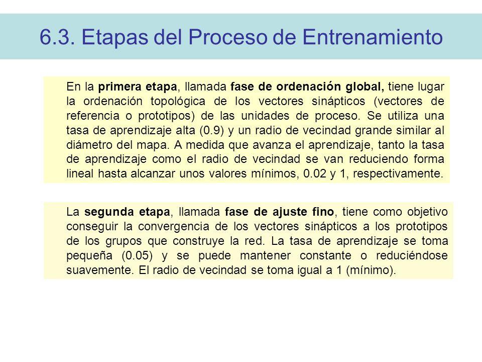 6.3. Etapas del Proceso de Entrenamiento En la primera etapa, llamada fase de ordenación global, tiene lugar la ordenación topológica de los vectores