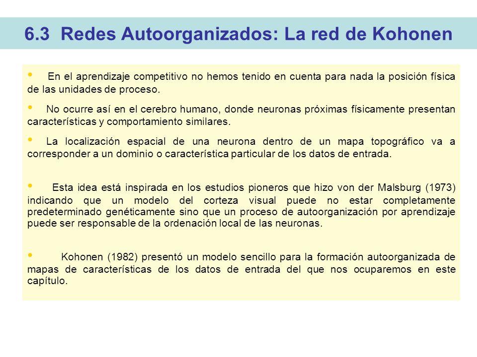 6.3 Redes Autoorganizados: La red de Kohonen En el aprendizaje competitivo no hemos tenido en cuenta para nada la posición física de las unidades de proceso.