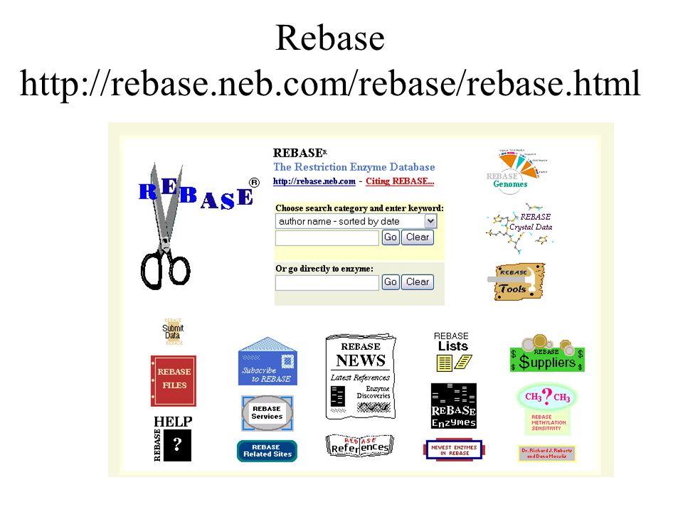 Rebase http://rebase.neb.com/rebase/rebase.html