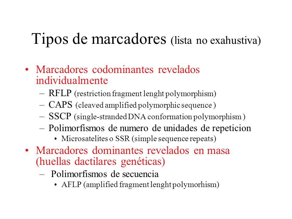 Tipos de marcadores (lista no exahustiva) Marcadores codominantes revelados individualmente –RFLP (restriction fragment lenght polymorphism) –CAPS (cl