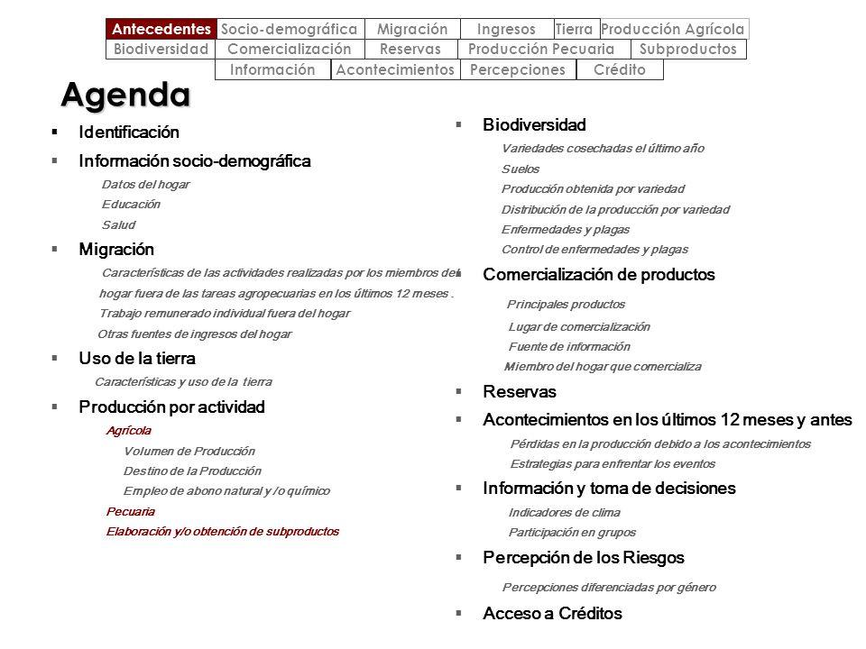 Agenda Identificación Información socio-demográfica Datos del hogar Educación Salud Migración Características de las actividades realizadas por los mi