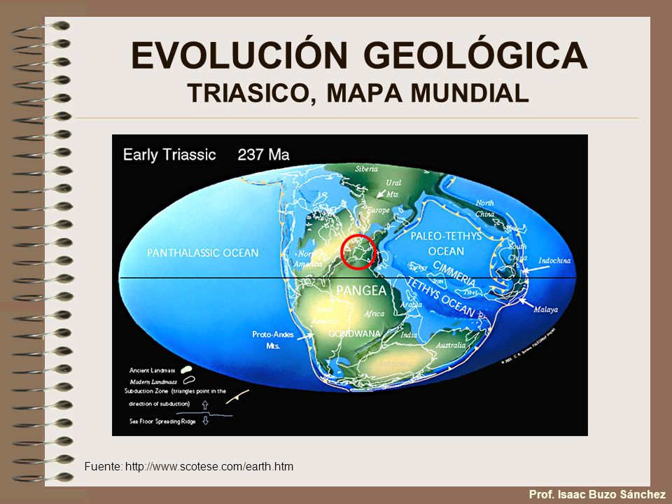EVOLUCIÓN GEOLÓGICA TRIASICO, MAPA MUNDIAL Fuente: http://www.scotese.com/earth.htm Prof.