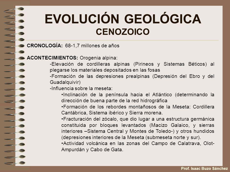 EVOLUCIÓN GEOLÓGICA CENOZOICO Prof. Isaac Buzo Sánchez CRONOLOGÍA: 68-1,7 millones de años ACONTECIMIENTOS: Orogenia alpina: -Elevación de cordilleras