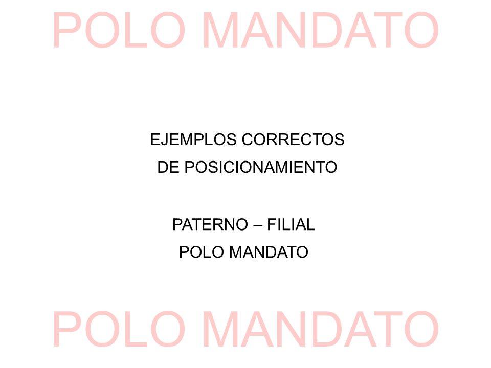 EJEMPLOS CORRECTOS DE POSICIONAMIENTO PATERNO – FILIAL POLO MANDATO