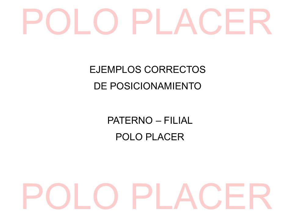 EJEMPLOS CORRECTOS DE POSICIONAMIENTO PATERNO – FILIAL POLO PLACER