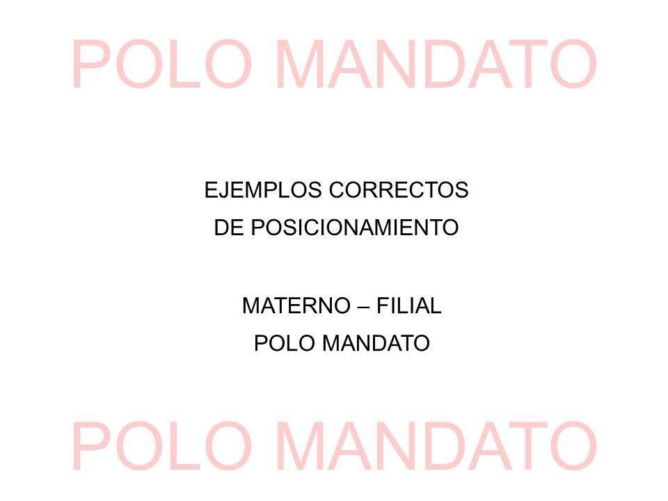 EJEMPLOS CORRECTOS DE POSICIONAMIENTO MATERNO – FILIAL POLO MANDATO