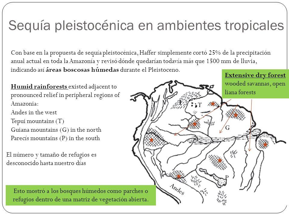 Sequía pleistocénica en ambientes tropicales Con base en la propuesta de sequía pleistocénica, Haffer simplemente cortó 25% de la precipitación anual