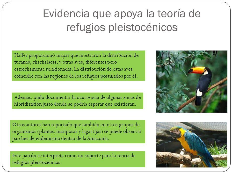 Evidencia que apoya la teoría de refugios pleistocénicos Haffer proporcionó mapas que mostraron la distribución de tucanes, chachalacas, y otras aves,