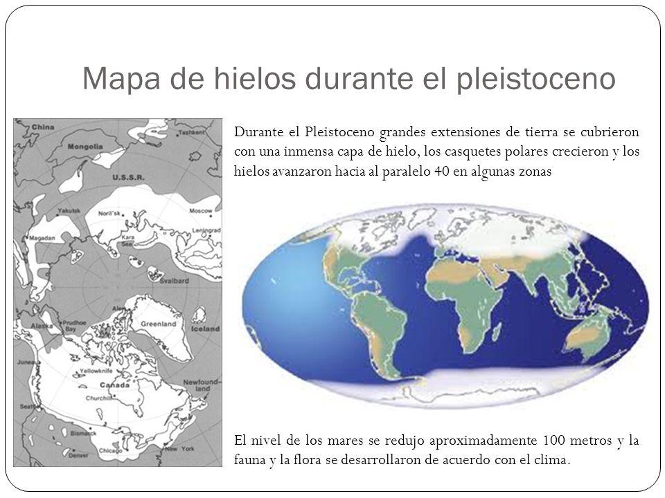 Mapa de hielos durante el pleistoceno Durante el Pleistoceno grandes extensiones de tierra se cubrieron con una inmensa capa de hielo, los casquetes p