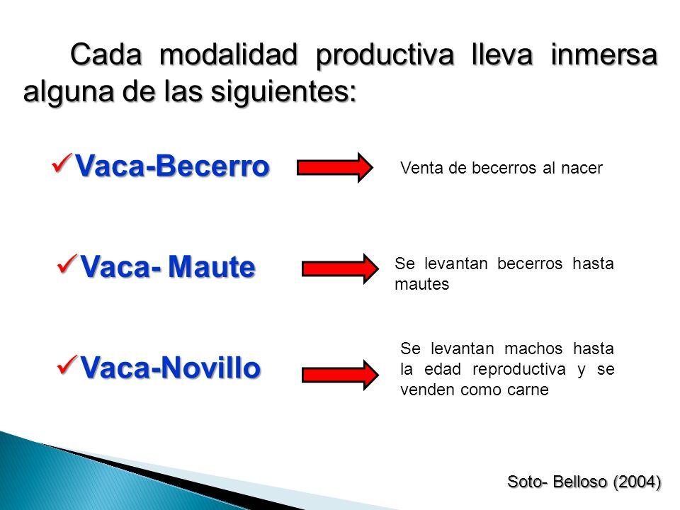 Cada modalidad productiva lleva inmersa alguna de las siguientes: Soto- Belloso (2004) Venta de becerros al nacer Se levantan becerros hasta mautes Se