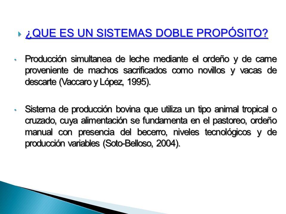 Cada modalidad productiva lleva inmersa alguna de las siguientes: Soto- Belloso (2004) Venta de becerros al nacer Se levantan becerros hasta mautes Se levantan machos hasta la edad reproductiva y se venden como carne Vaca-Becerro Vaca-Becerro Vaca- Maute Vaca- Maute Vaca-Novillo Vaca-Novillo