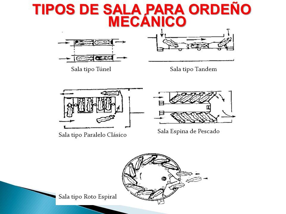 Sala tipo TúnelSala tipo Tandem Sala tipo Paralelo Clásico Sala Espina de Pescado Sala tipo Roto Espiral TIPOS DE SALA PARA ORDEÑO MECÁNICO
