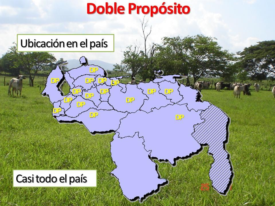 Ubicación en el país Doble Propósito DP DP DP DP DP DP DP DP DP DP Casi todo el país DP DP DP DP DP DP