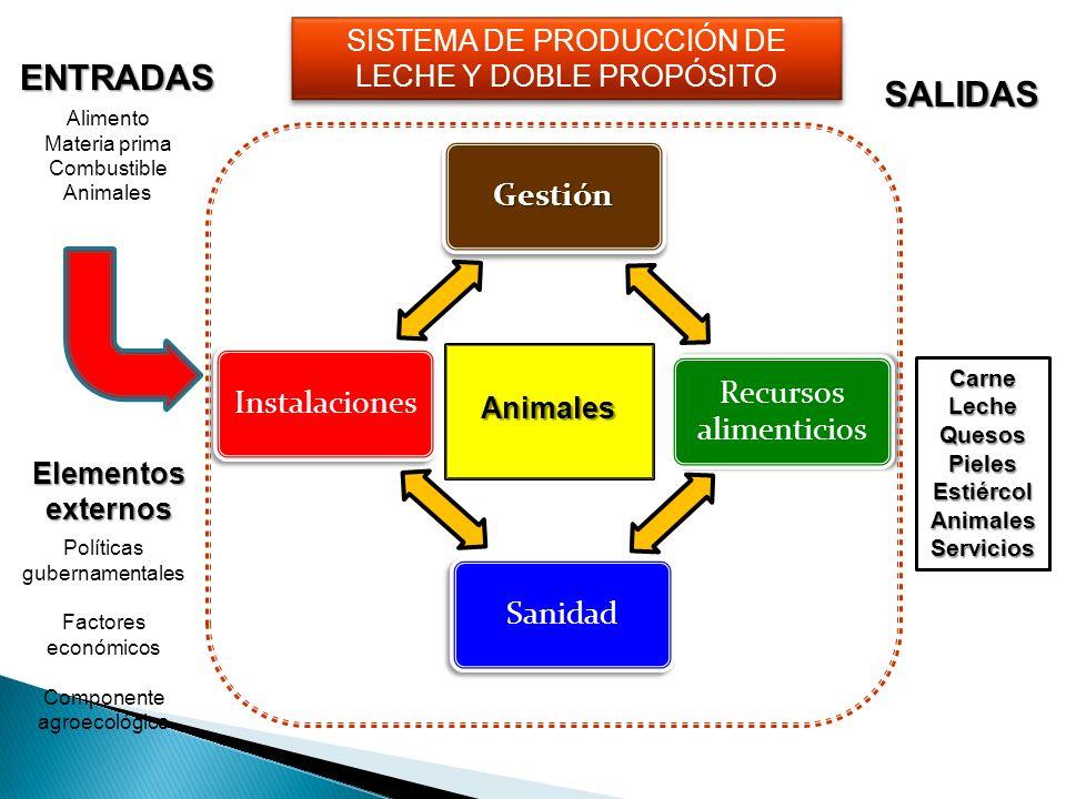 SISTEMA DE PRODUCCIÓN DE LECHE Y DOBLE PROPÓSITO Políticas gubernamentales Factores económicos Componente agroecológico Animales Elementos externos SA