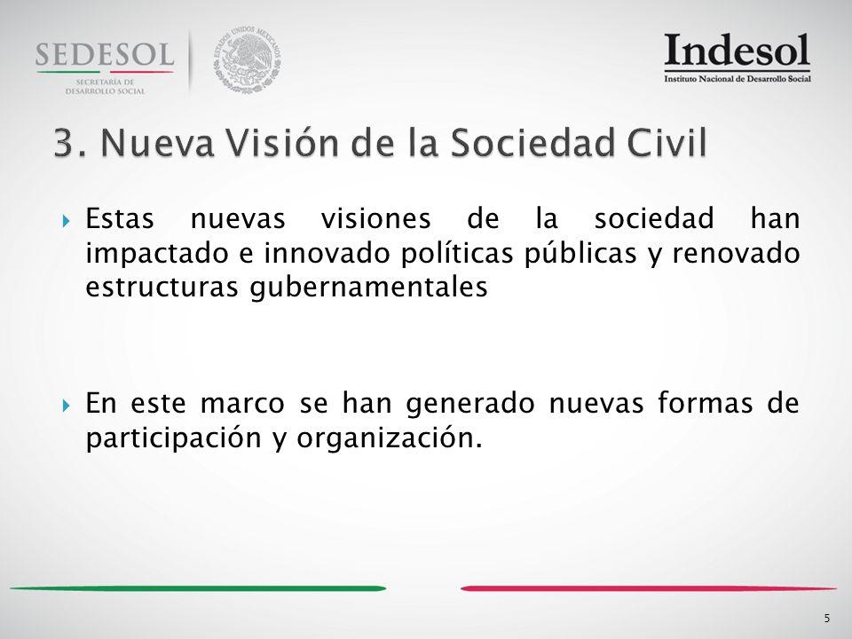 Estas nuevas visiones de la sociedad han impactado e innovado políticas públicas y renovado estructuras gubernamentales En este marco se han generado nuevas formas de participación y organización.