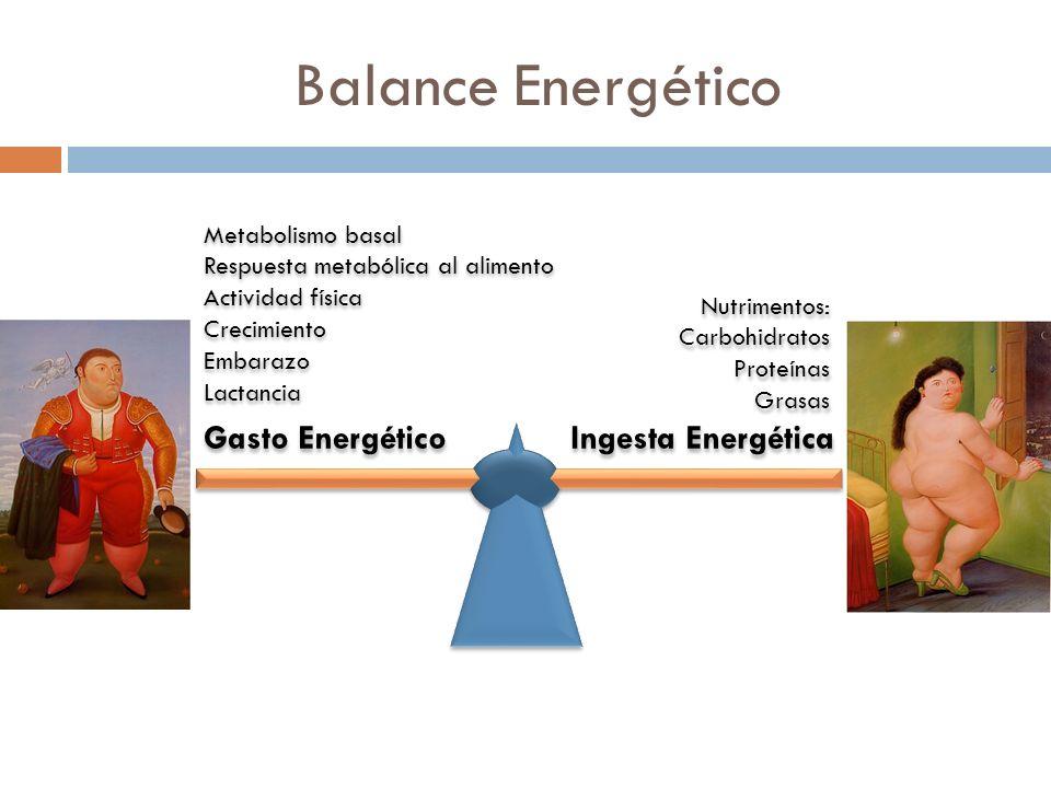 Balance Energético Gasto Energético Ingesta Energética Metabolismo basal Respuesta metabólica al alimento Actividad física Crecimiento Embarazo Lactancia Metabolismo basal Respuesta metabólica al alimento Actividad física Crecimiento Embarazo Lactancia Nutrimentos: Carbohidratos Proteínas Grasas Nutrimentos: Carbohidratos Proteínas Grasas