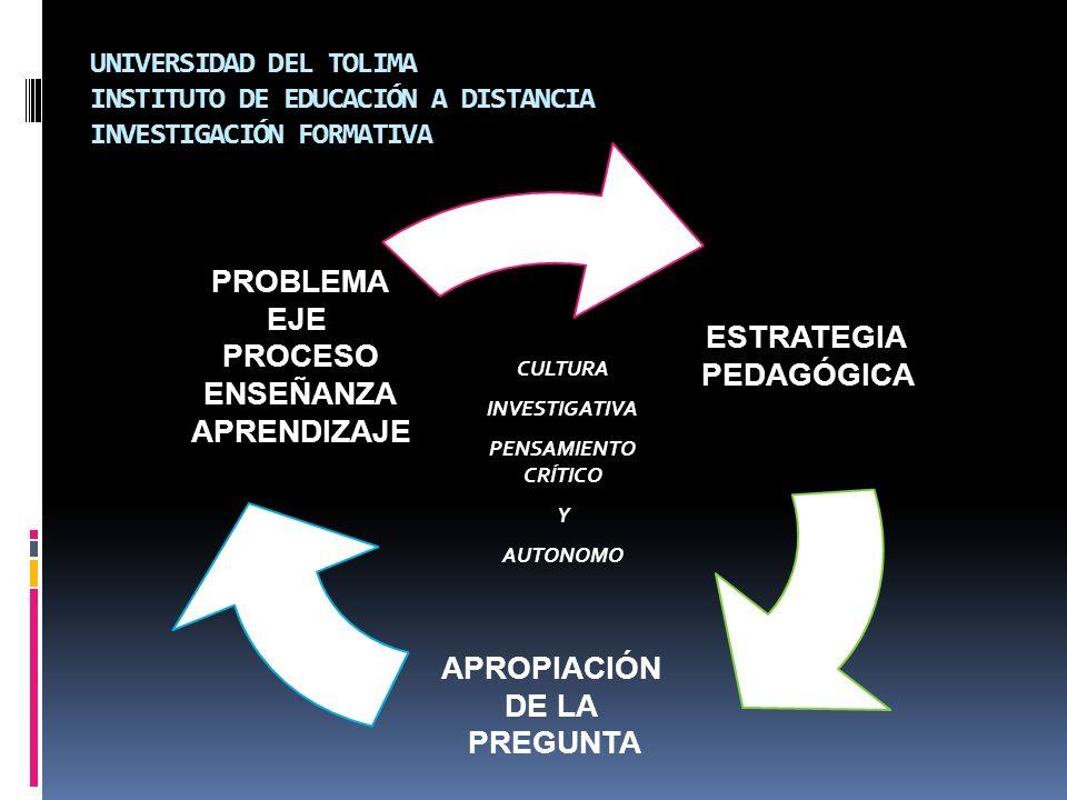 UNIVERSIDAD DEL TOLIMA INSTITUTO DE EDUCACIÓN A DISTANCIA INVESTIGACIÓN FORMATIVA ESTRATEGIA PEDAGÓGICA APROPIACIÓN DE LA PREGUNTA PROBLEMA EJE PROCES