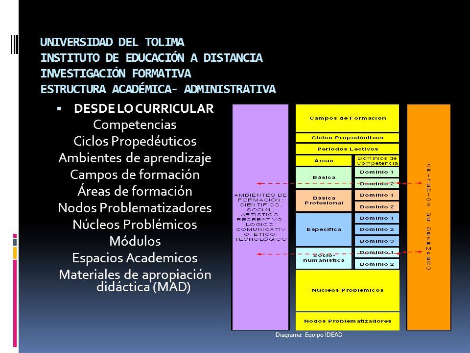 UNIVERSIDAD DEL TOLIMA INSTITUTO DE EDUCACIÓN A DISTANCIA INVESTIGACIÓN FORMATIVA ESTRUCTURA ACADÉMICA- ADMINISTRATIVA DESDE LO CURRICULAR Competencia