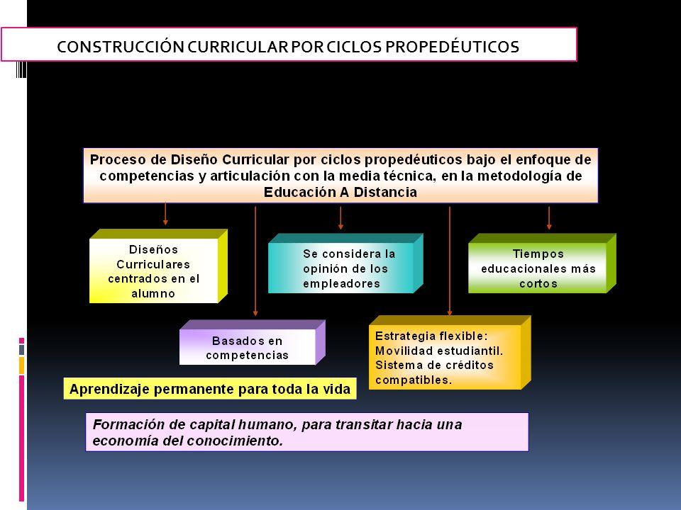 CONSTRUCCIÓN CURRICULAR POR CICLOS PROPEDÉUTICOS