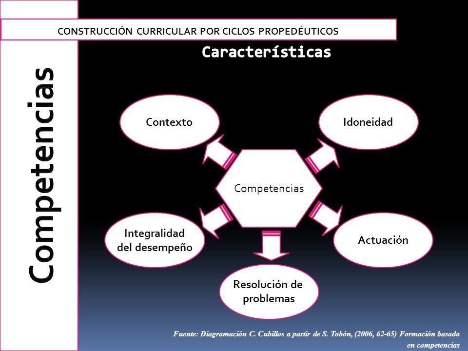 Integralidad del desempeño Competencias Contexto Actuación Idoneidad Resolución de problemas Fuente: Diagramación C. Cubillos a partir de S. Tobón, (2