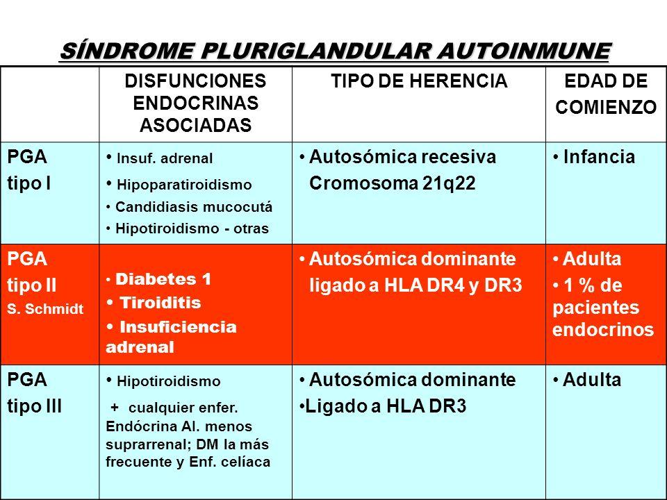 DISFUNCIONES ENDOCRINAS ASOCIADAS TIPO DE HERENCIAEDAD DE COMIENZO PGA tipo I Insuf. adrenal Hipoparatiroidismo Candidiasis mucocutá Hipotiroidismo -