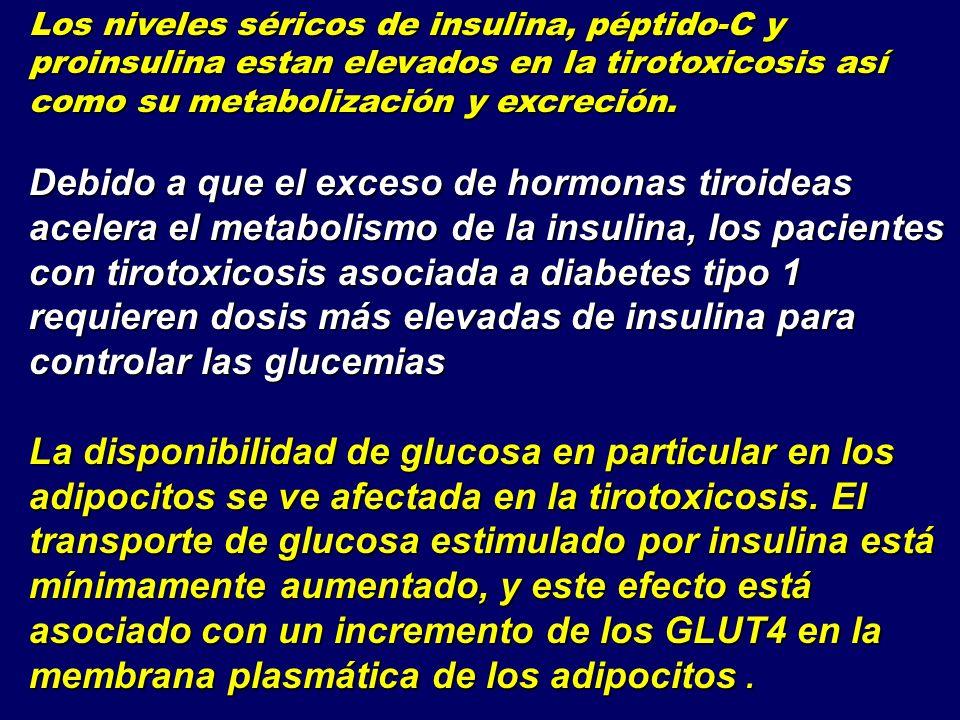 Los niveles séricos de insulina, péptido-C y proinsulina estan elevados en la tirotoxicosis así como su metabolización y excreción. Debido a que el ex