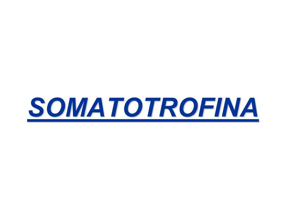 TRATAMIENTO DE LA ACROMEGALIA 1.Quirúrgico 2.Análogo de la somatostatina ( Octreotide – Sandostatin) Mejoran el control glucémico.