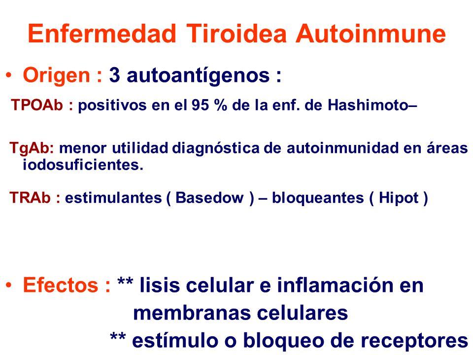 Enfermedad Tiroidea Autoinmune Origen : 3 autoantígenos : TPOAb : positivos en el 95 % de la enf. de Hashimoto– TgAb: menor utilidad diagnóstica de au
