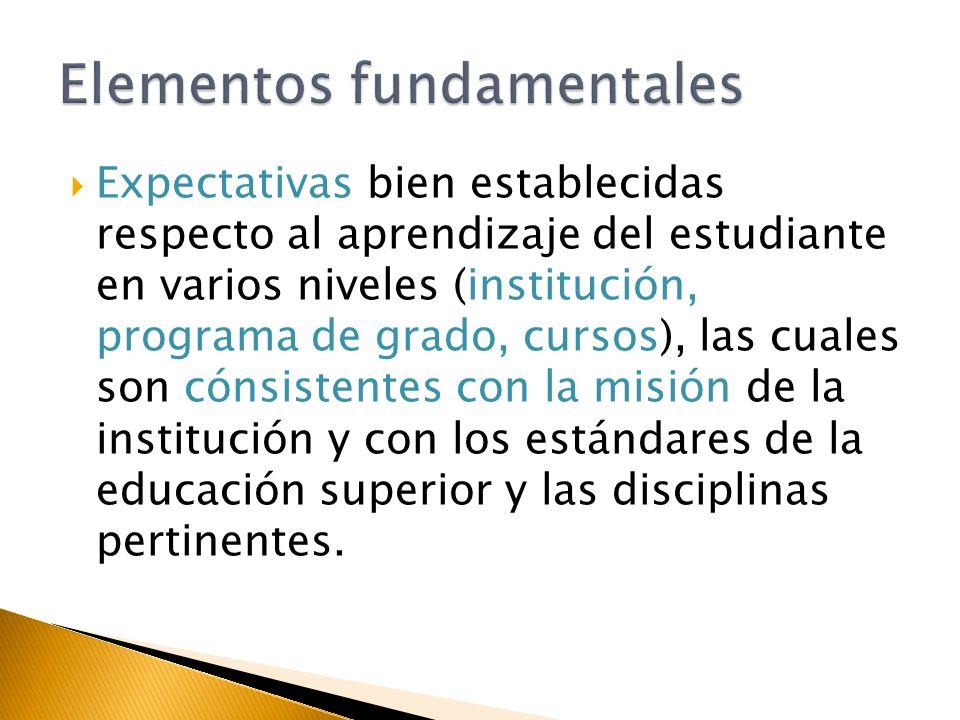 Expectativas bien establecidas respecto al aprendizaje del estudiante en varios niveles (institución, programa de grado, cursos), las cuales son cónsistentes con la misión de la institución y con los estándares de la educación superior y las disciplinas pertinentes.