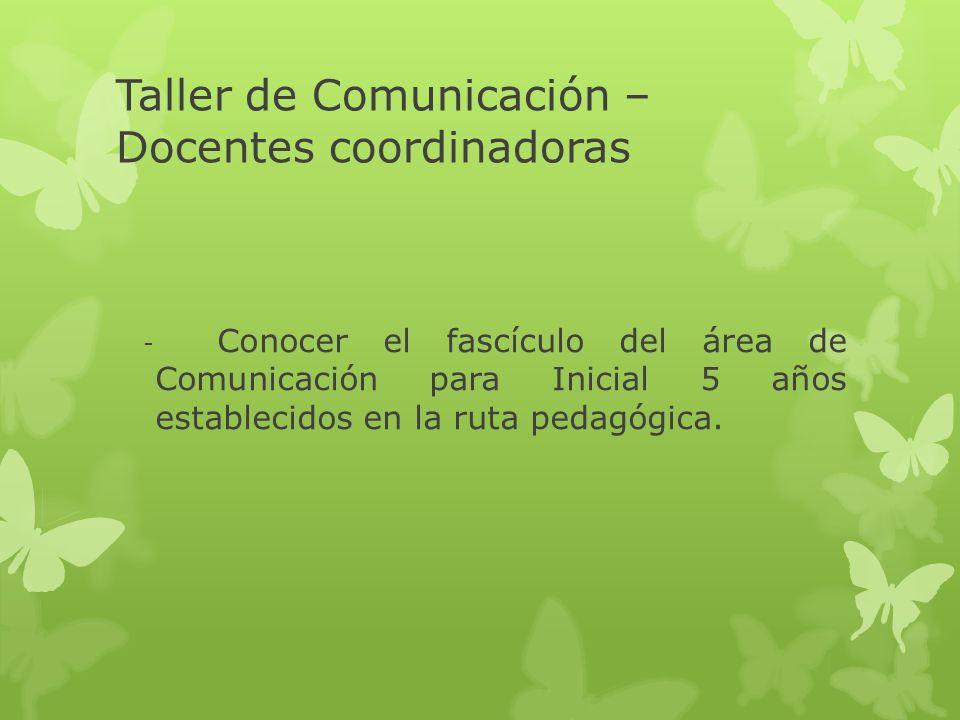 Taller de Comunicación Región ¿Qué evidencias han recogido de la práctica de las promotoras con respecto a la comprensión del enfoque Comunicativo y Textual.