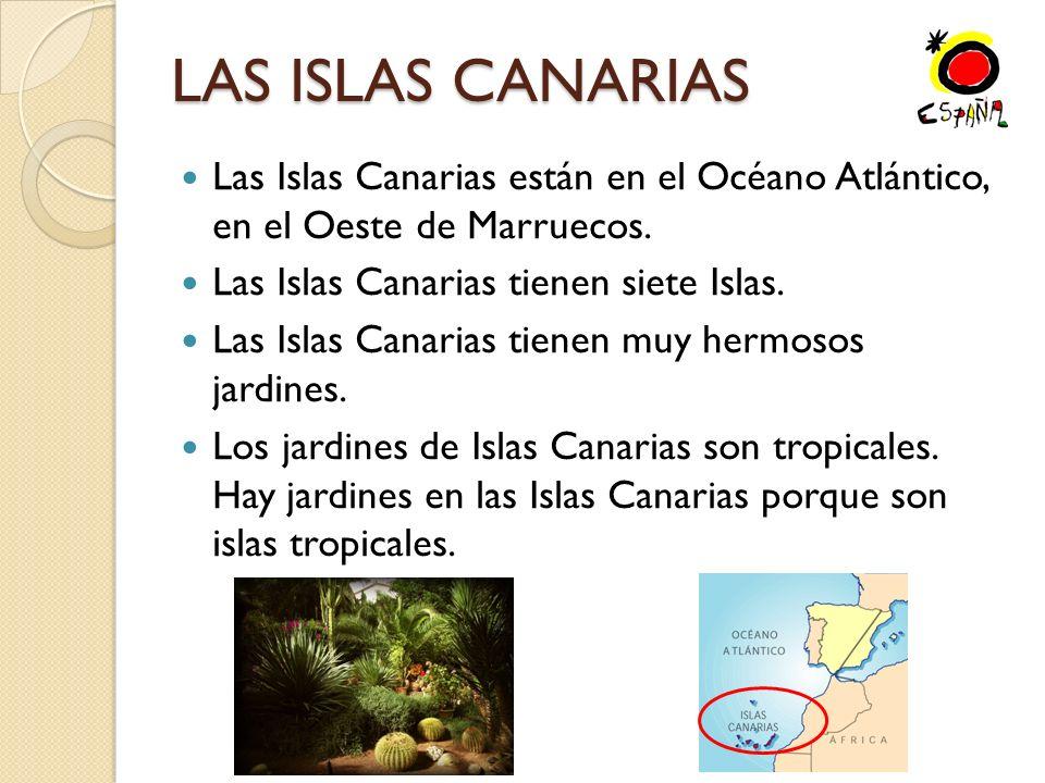 LAS ISLAS CANARIAS Las Islas Canarias están en el Océano Atlántico, en el Oeste de Marruecos.