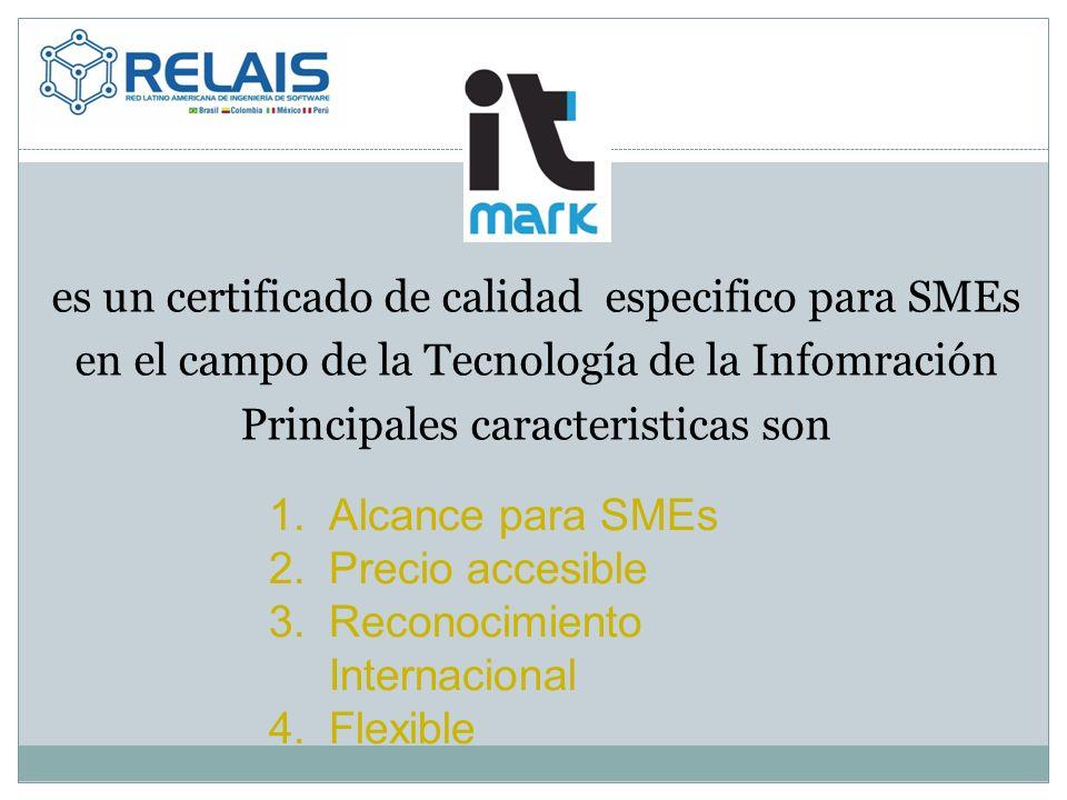 es un certificado de calidad especifico para SMEs en el campo de la Tecnología de la Infomración Principales caracteristicas son 1.Alcance para SMEs 2