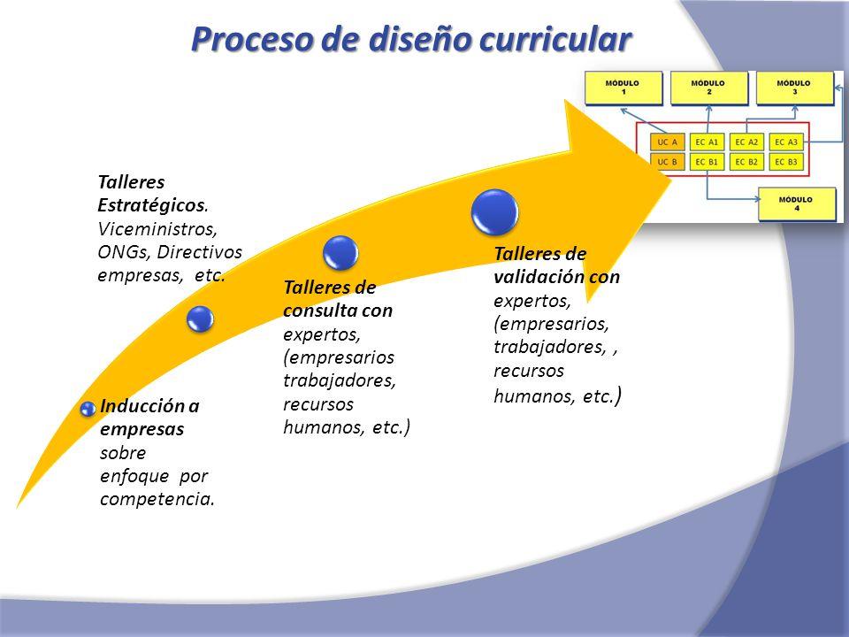 Proceso de diseño curricular Inducción a empresas sobre enfoque por competencia. Talleres Estratégicos. Viceministros, ONGs, Directivos empresas, etc.