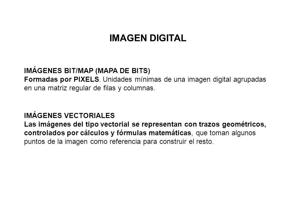 IMAGEN DIGITAL IMÁGENES BIT/MAP (MAPA DE BITS) Formadas por PIXELS. Unidades mínimas de una imagen digital agrupadas en una matriz regular de filas y