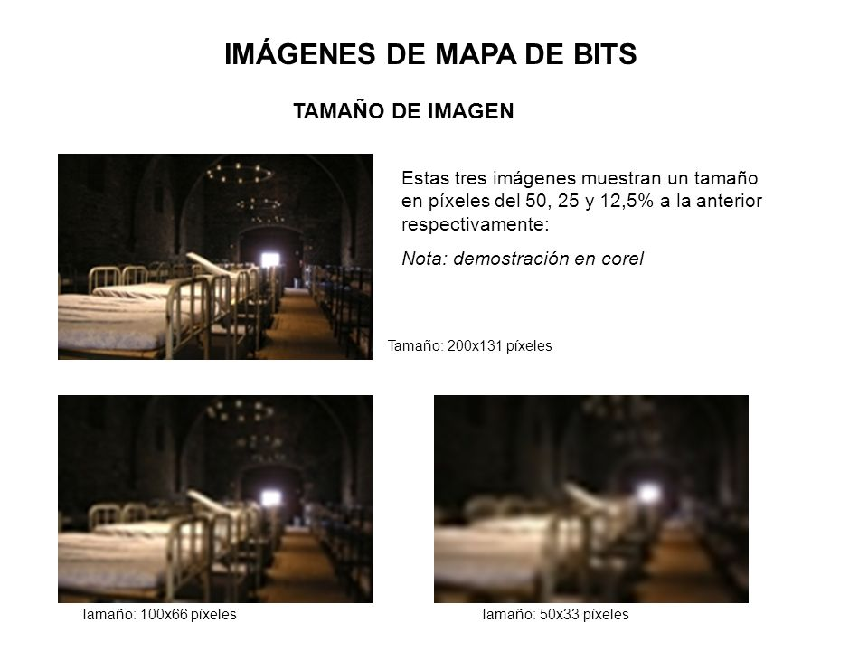 IMÁGENES DE MAPA DE BITS TAMAÑO DE IMAGEN Estas tres imágenes muestran un tamaño en píxeles del 50, 25 y 12,5% a la anterior respectivamente: Nota: de