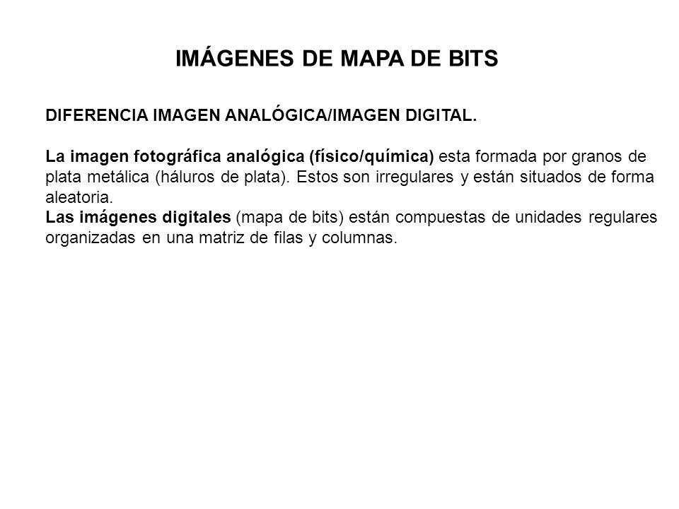 IMÁGENES DE MAPA DE BITS DIFERENCIA IMAGEN ANALÓGICA/IMAGEN DIGITAL. La imagen fotográfica analógica (físico/química) esta formada por granos de plata