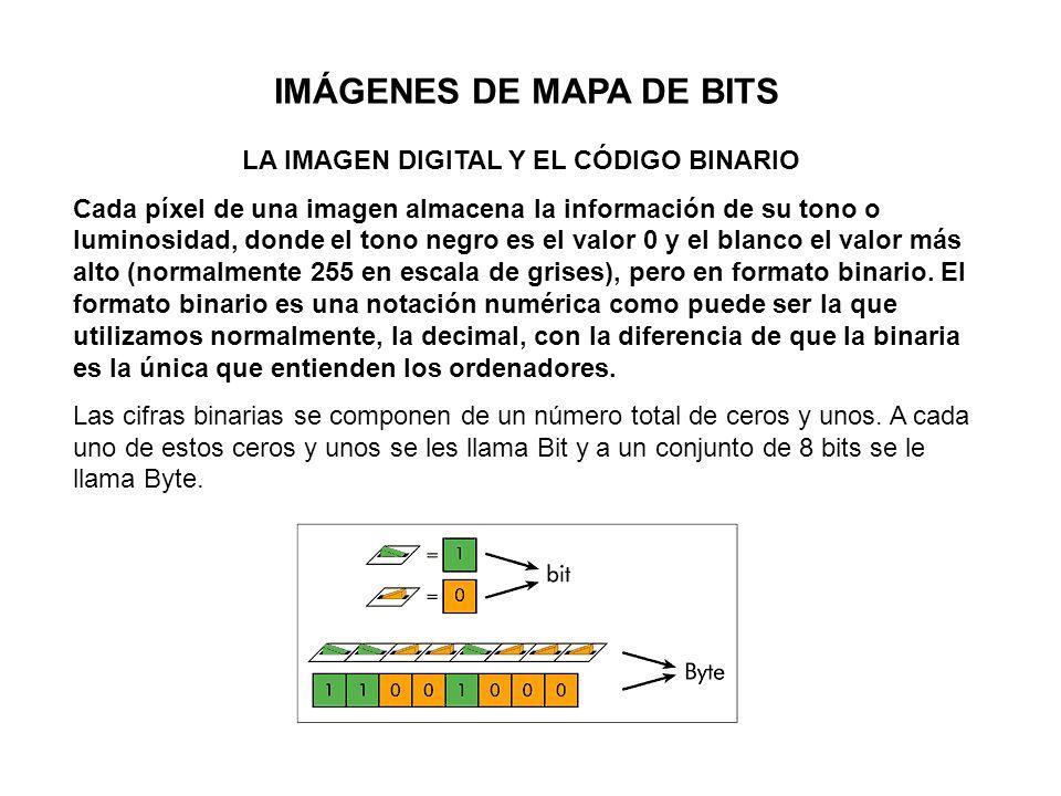 IMÁGENES DE MAPA DE BITS LA IMAGEN DIGITAL Y EL CÓDIGO BINARIO Cada píxel de una imagen almacena la información de su tono o luminosidad, donde el ton