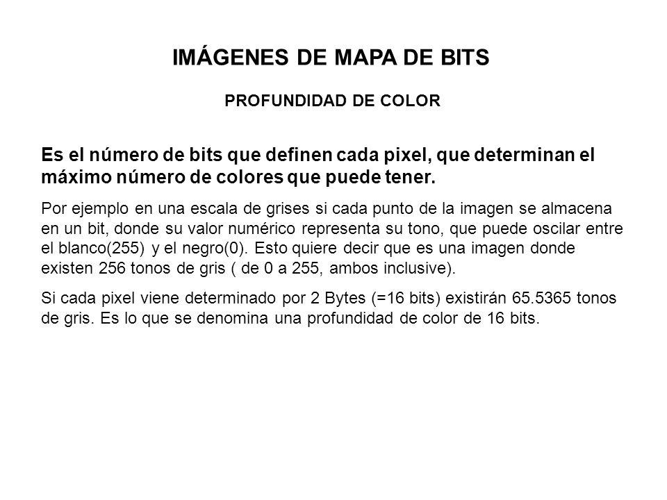 IMÁGENES DE MAPA DE BITS PROFUNDIDAD DE COLOR Es el número de bits que definen cada pixel, que determinan el máximo número de colores que puede tener.