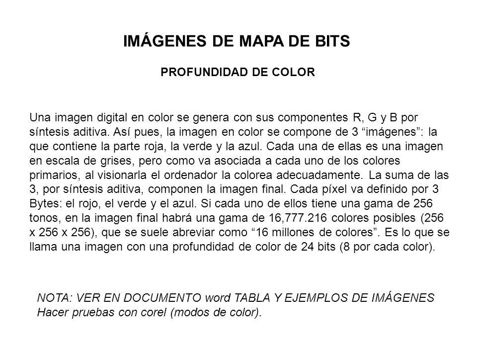 IMÁGENES DE MAPA DE BITS PROFUNDIDAD DE COLOR Una imagen digital en color se genera con sus componentes R, G y B por síntesis aditiva. Así pues, la im