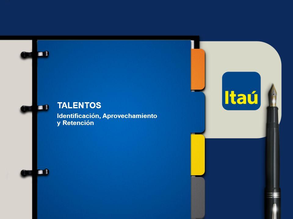 12 Itaú Unibanco Holding S.A. TALENTOS Identificación, Aprovechamiento y Retención