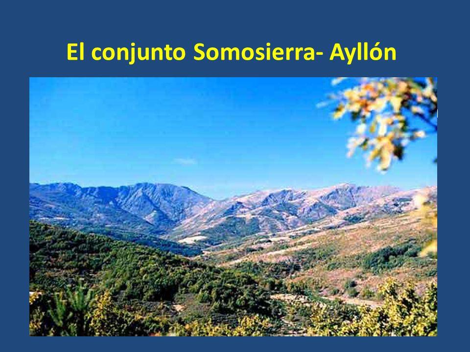 El conjunto Somosierra- Ayllón Se extienden desde el puerto de Somosierra hacia el este y continúa en Guadalajara y Segovia hasta el río Jarama. En él